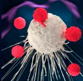 Что такое негативный рак молочной железы 12